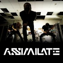 assimilate-web